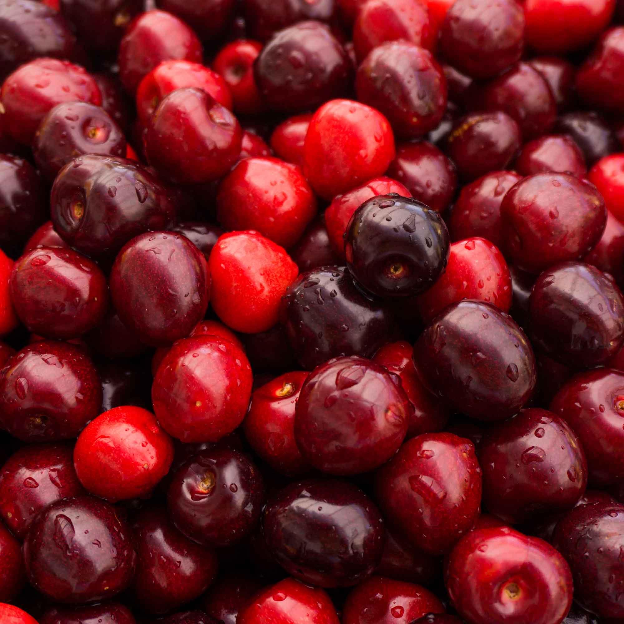 exportación de cerezas jerte